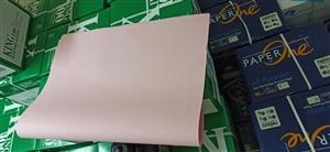 Bìa A1 màu hồng
